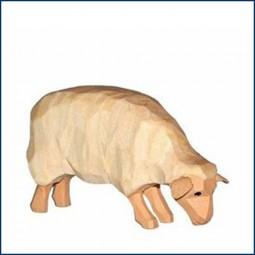 Schaf, hell, fressend