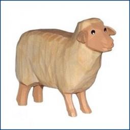 Schaf, hell, Kopf hoch